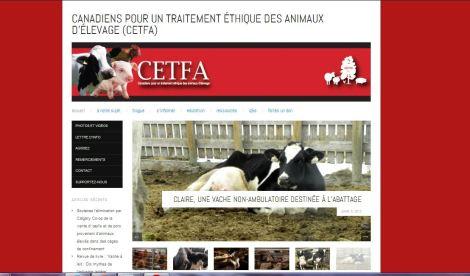 Site de CETFA en français