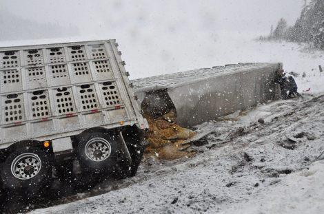 Transport trucks involved in a crash on Highway 17 near White River, in Ontario. (Margot Freitag/Facebook)